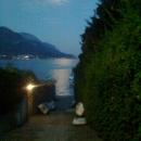 notte_di_luna_piena.jpg