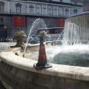 aiuola_e_fontana_piazza_trieste_e_trento_11.jpg