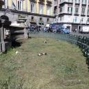 aiuola_e_fontana_piazza_trieste_e_trento_2.jpg