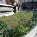 aiuola_e_fontana_piazza_trieste_e_trento_8.jpg