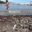 mappatella_oggi_i_genitori_portano_i_bambini_fuori_dall_acqua_dopo_l_allarme2.jpg