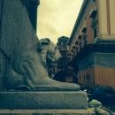 statue_equestri_intervento_volontari13.jpg