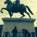 statue_equestri_intervento_volontari15.jpg