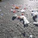 a_a_a_a_capodanno_della_vergogna_piazza_del_plebiscito_non_spazzata2.jpg