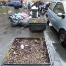 piazza_carolina_della_vergognafioriere_gestite_dal_comune.jpg