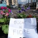 buche_in_fiore_ponte_della_maddalena_5.jpg