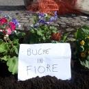 buche_in_fiore_ponte_della_maddalena_8.jpg
