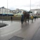 circo_a_melito_elefante_circola_tra_le_strade_per_pubblicizzarlo_2.jpg