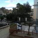 albero_cade_dentro_la_scuola_elementare_di_crispano_foto_cogito.jpg