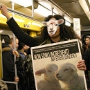 flash_mob_in_metropolitana.jpg