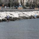 primavera_a_napoli_mappatella_beach_primo_bagno_della_stagione_9.jpg