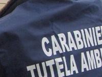 carabinieri_noe.jpg