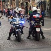 nibbio_squadra_mobile_polizia_e1510391862518.jpg