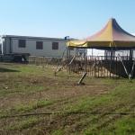 animali circo