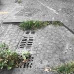 Vomero  piazza Vanvitelli  caditoie ostruite
