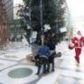 Vedi la galleria NAPOLI : Torna l'albero di Natale in Galleria Umberto i