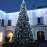 Albero di  Natale Capri